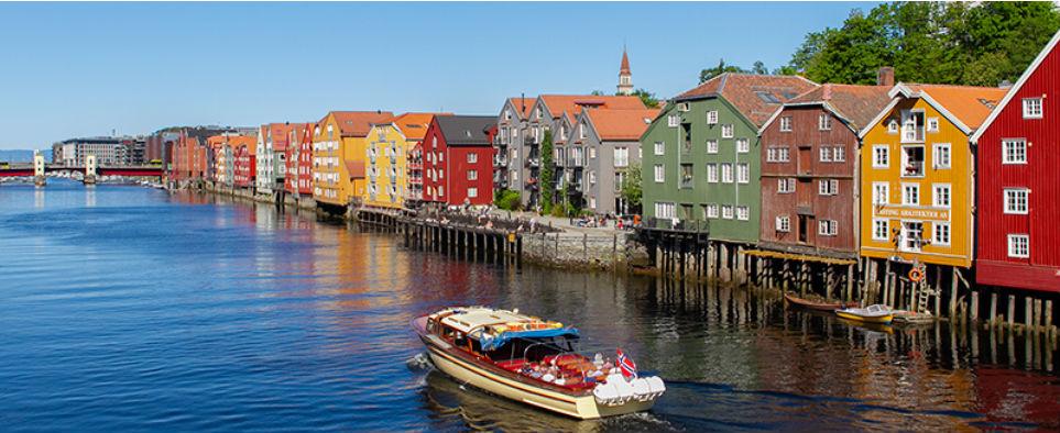 cf4dc5b0d389 Home - The Nordic Orthopeadic
